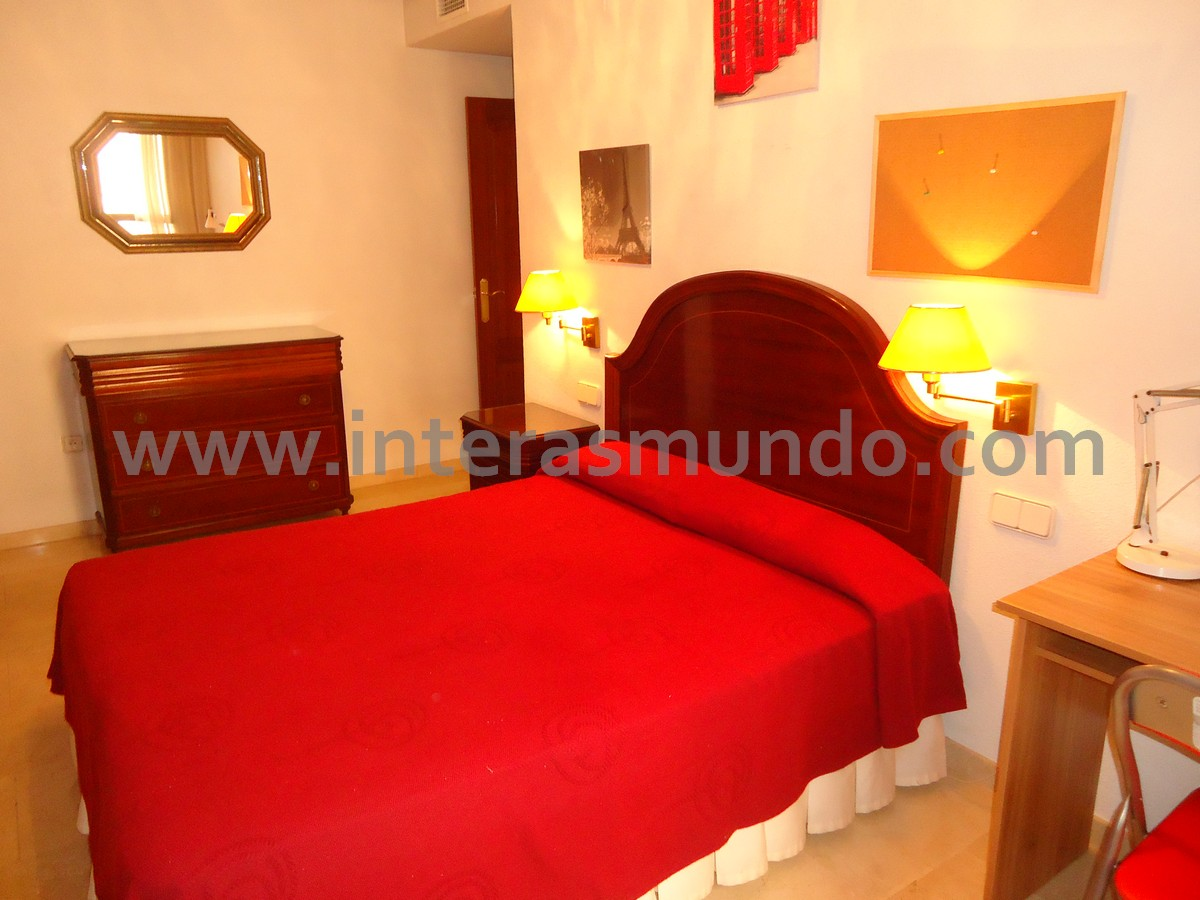 shared accommodation for erasmus students in cordoba city center 7704 avda cervantes