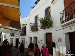 accommodation-erasmus-student-cordoba (113)