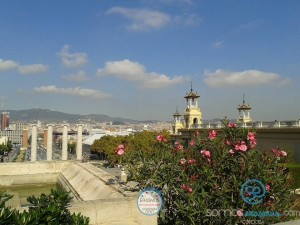 student-accommodation-cordoba (162)